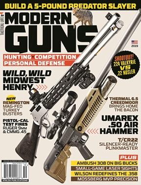 modern firearms tactical edition